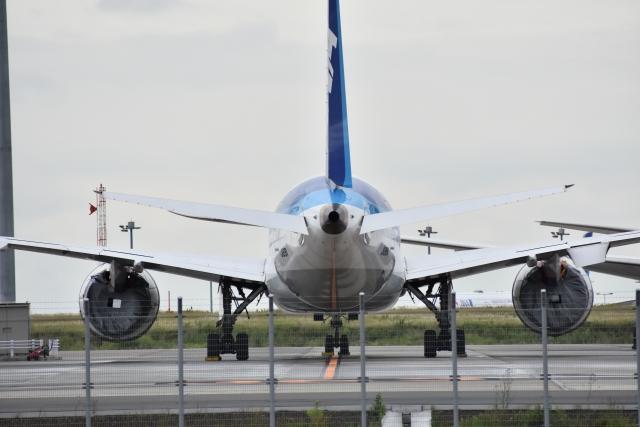 JALの飛行機を後ろから見た写真