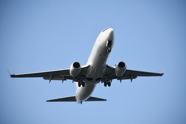 飛ぶANAの飛行機