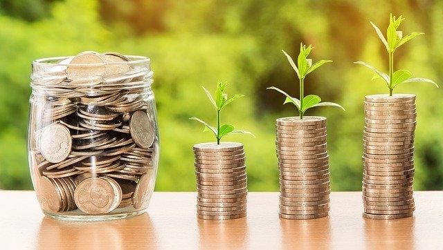 積み重ねたコインから芽生える植物