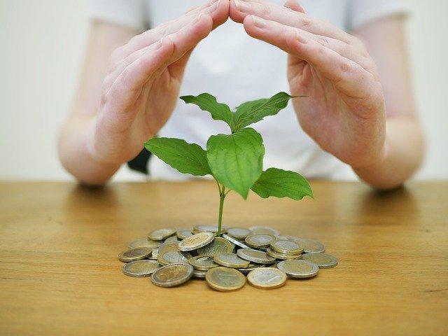 お金から生まれる芽を手で覆う様子