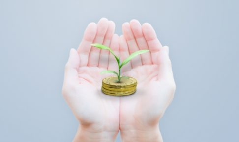 両手でコインから出た芽を持つ