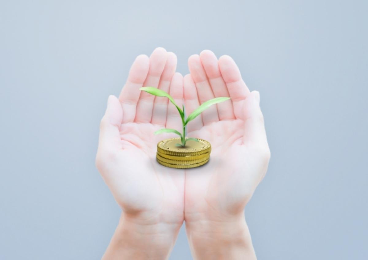 手のひらにあるお金と芽